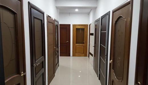 Популярный магазин дверей (продано)