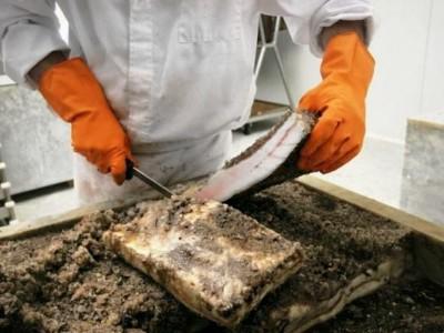 Высокомаржинальное мясное производство