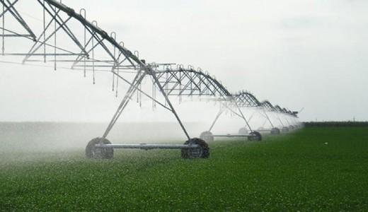 Овощное хозяйство с поливными землями