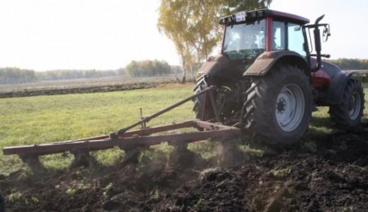 Сельскохозяйственное предприятие в Чановском районе