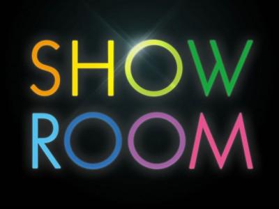 Шоу Рум в Покровском районе (продано)
