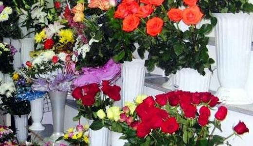 Цветочный отдел, 7 лет работы (продано)