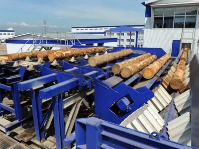 Деревообрабатывающее предприятие полного цикла переработки