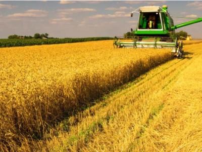 Фермерское хозяйство (продано)