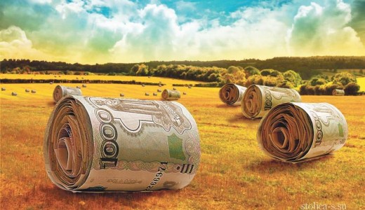 Фермерское хозяйство в собственности