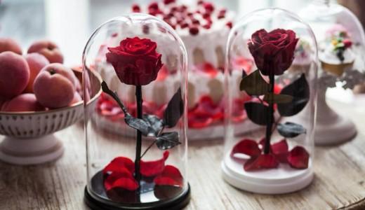 Сеть цветочных магазинов