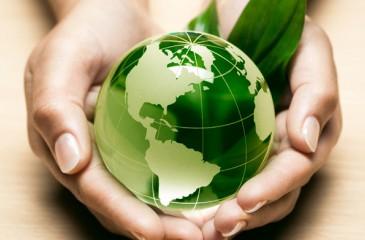 Популярный магазин экологических товаров