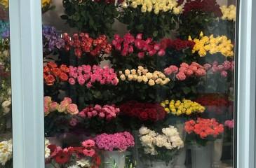 Салон цветов в нежилом на первой линии (продано)
