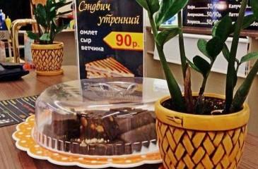 Фастфуд (сэндвичи) на фудкорте в Весне (продано)