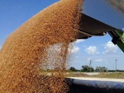 Доля в крупном зерноперерабатывающем предприятии
