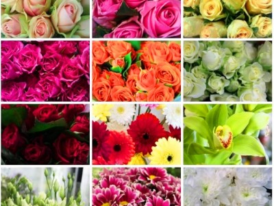 Магазин цветов и сувениров в центре (продано)