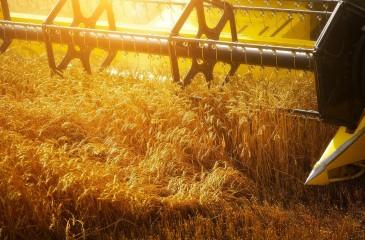 Сельхозпредприятие в Калманском районе