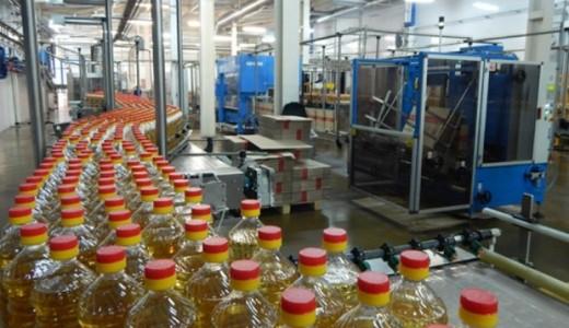 Производство растительного масла (300 тонн/мес)