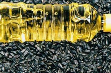 Производство нерафинированного подсолнечного масла