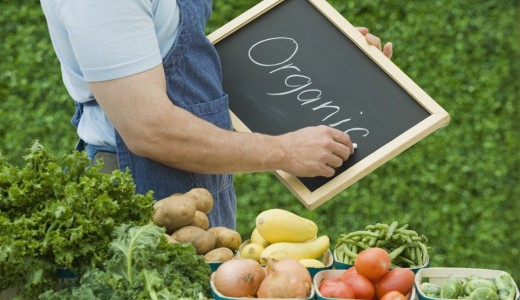 Интернет - магазин по продаже продуктов питания