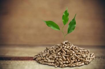 Производство топливных древесных гранул (пеллет)
