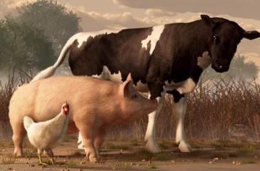 Фермерское хозяйство в 85 км. от Красноярска