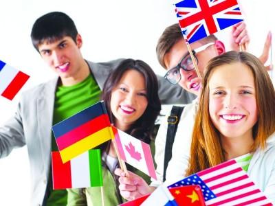 Сеть школ Иностранных языков (продано)