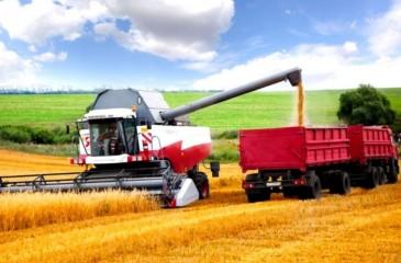 Фермерское хозяйство в Алтайском крае