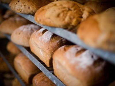 Хлебобулочное производство с 20-летним стажем