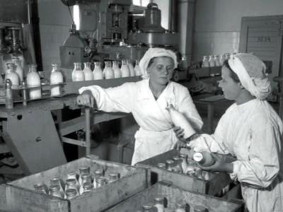 Завод молочных продуктов