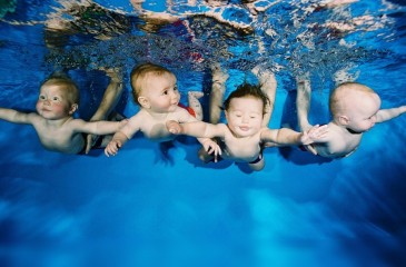 Известная сеть детских бассейнов